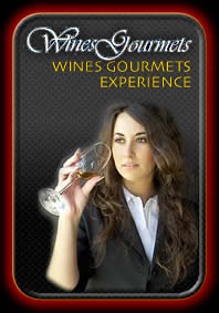 Wines Gourmets Experience